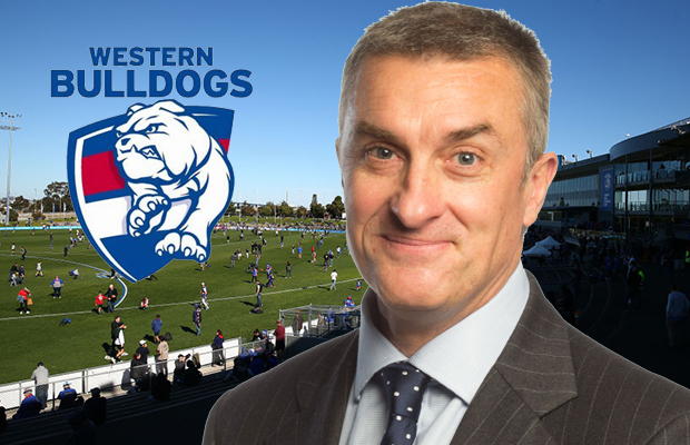 Article image for Why Tom Elliott thinks the Bulldogs' latest move is 'just a bit of useless virtue-signalling'