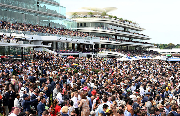 Article image for Racing minister explains lowest Melbourne Cup crowd in 26 years