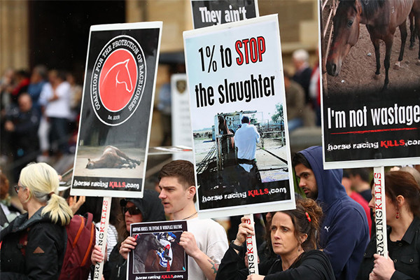 Article image for Anti-racing protesters say punters are turning away — but we did some fact-checking