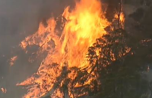 Article image for Disaster dodged as crews keep dangerous Plenty Gorge blaze away from homes