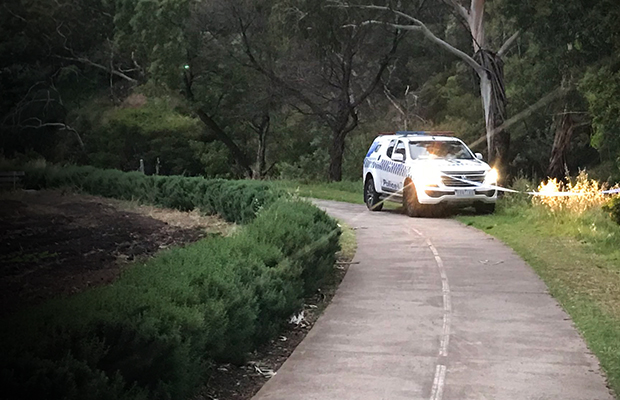 Article image for Coburg sex attack: Man charged with rape over Merri Creek horror