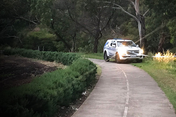 Article image for Coburg sex attack: Accused charged with 10 counts of rape for Merri Creek assault