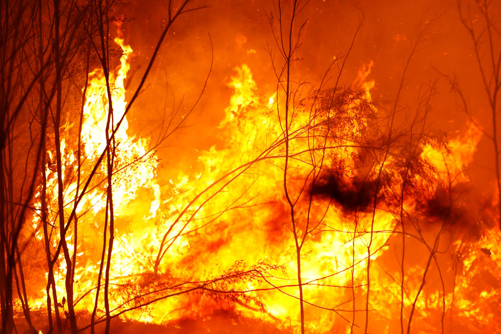 Article image for Dr Michael Carr-Gregg's five tips on how to help kids cope with the bushfires