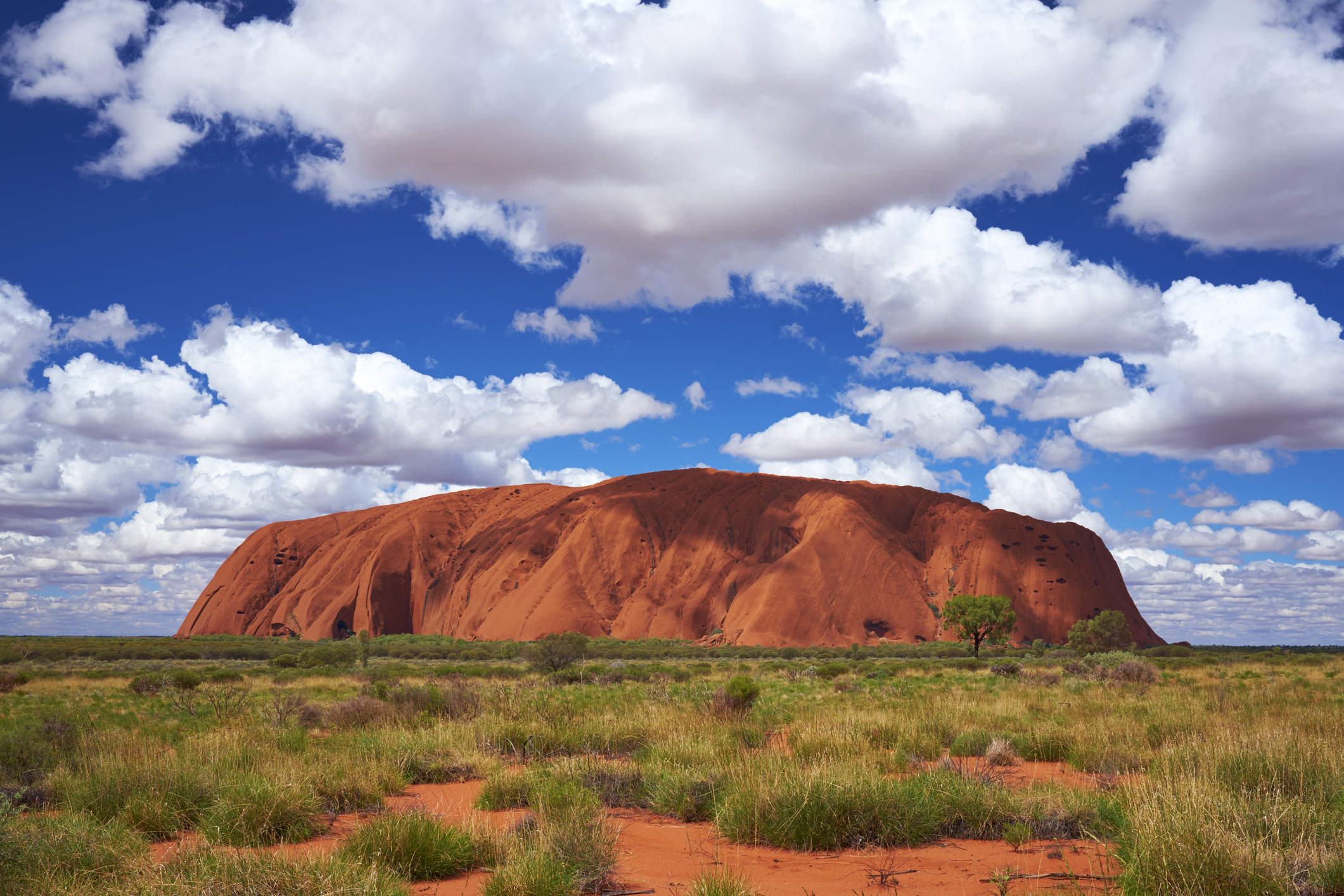 Article image for Concerns about Uluru tourism industry in wake of climbing closure