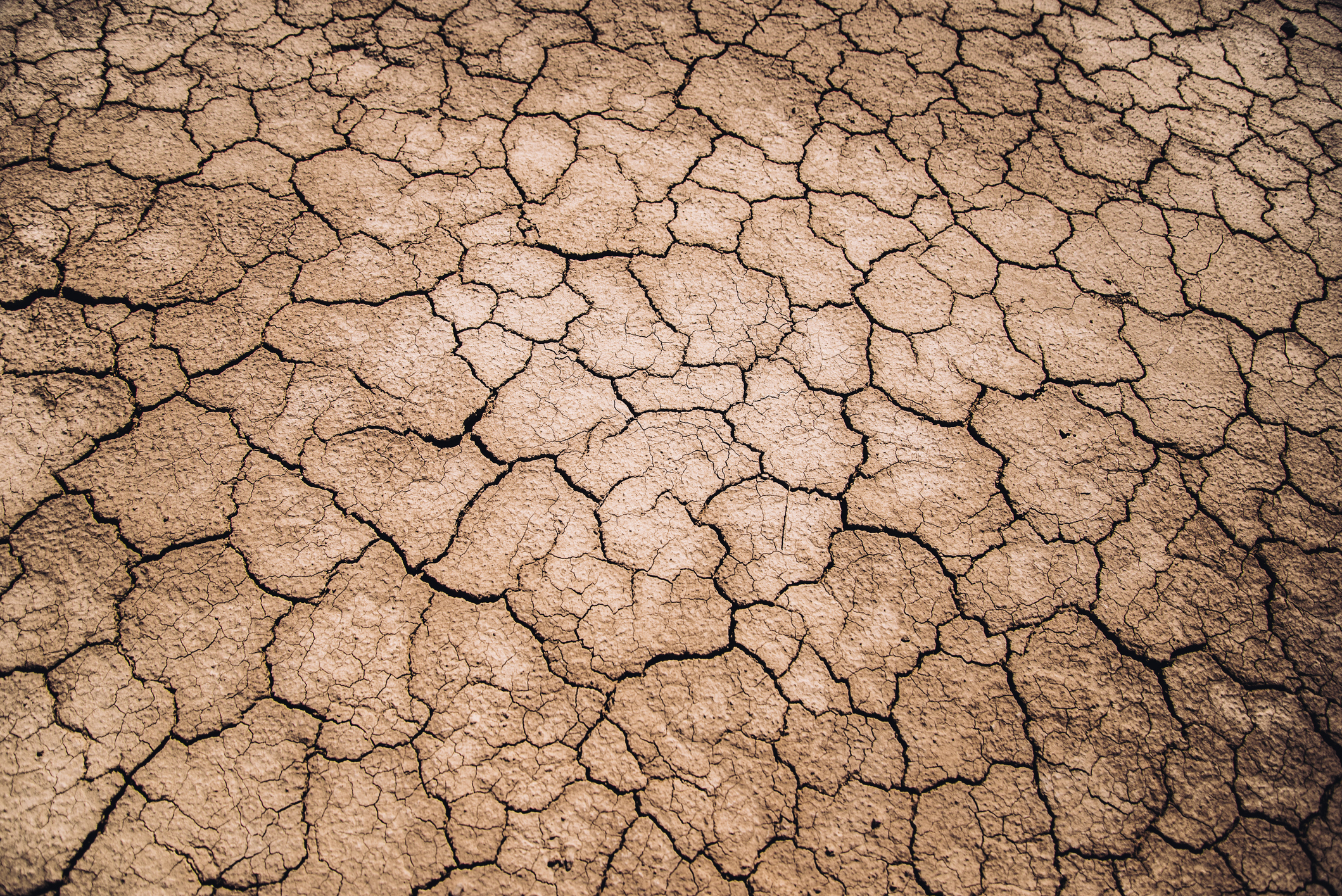 Article image for Melbourne 'at risk' of running out of fresh water by 2050