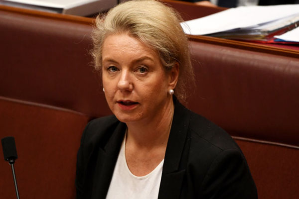 Article image for 'A terrible look for the government': Senator McKenzie resists calls to stand down