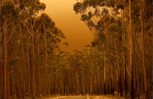 Article image for Victorian bushfires: Missing tally revised, authorities warn of long battle