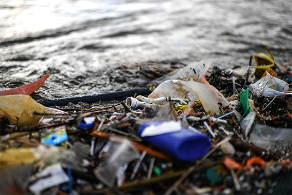 Article image for New report suggests phasing out 'problematic plastics' to tackle recycling crisis