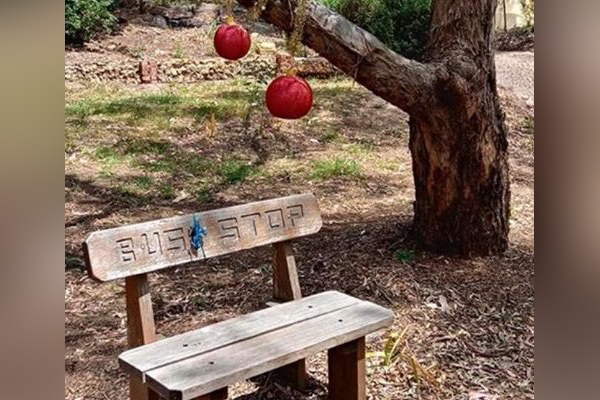 Article image for Help find Lachlan's bench seat! Father calls for return of autistic son's seat taken from Eltham