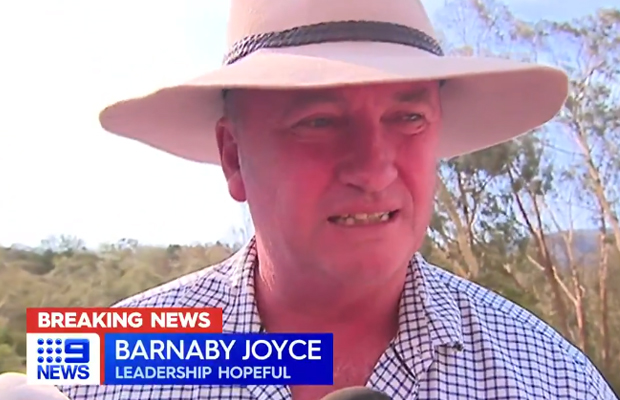 Article image for Barnaby Joyce fails to win back National Party leadership