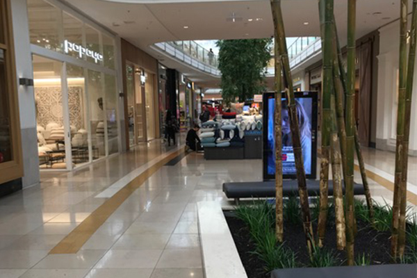 Article image for Chadstone shopping centre deserted as coronavirus fears grow