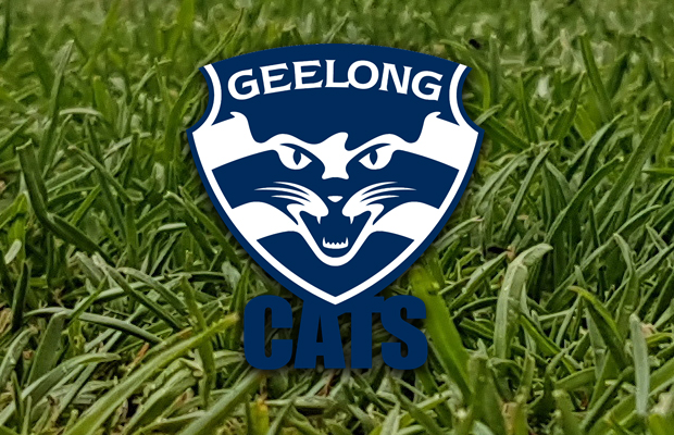 Article image for Geelong sanctioned by AFL for breaching player payment rules