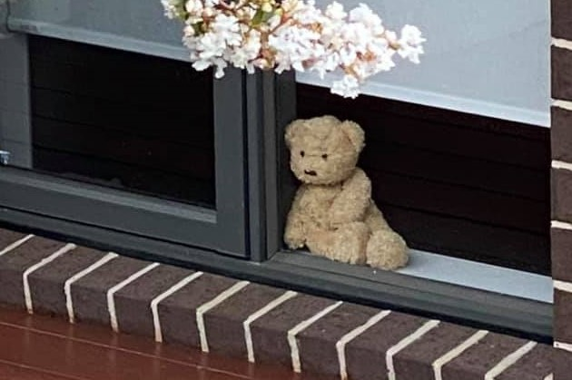 Article image for Why a Melbourne woman wants you to put a teddy bear in your window