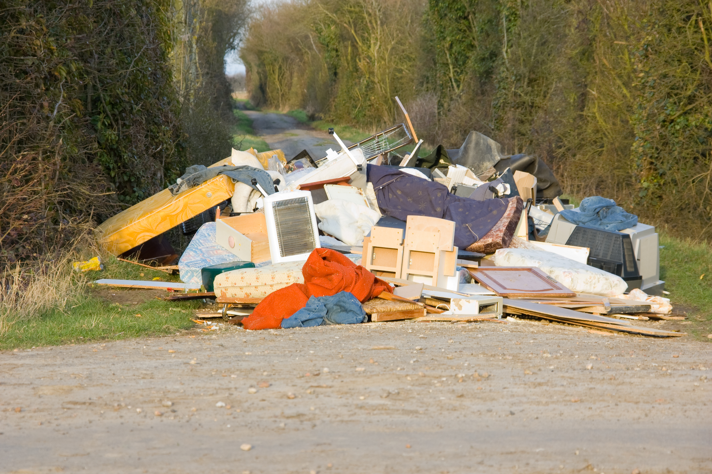 Article image for Why illegal rubbish dumping has surged during the COVID-19 crisis