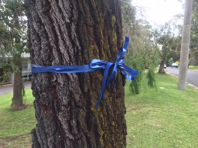 Article image for Blue blitz: Victoria turns blue with tributes to fallen police