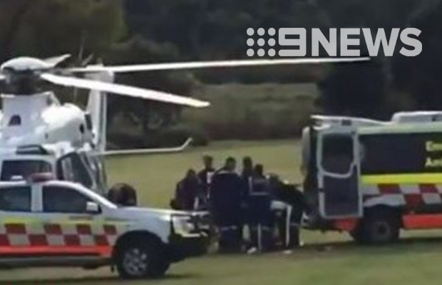 Zoo keeper left fighting for life in NSW