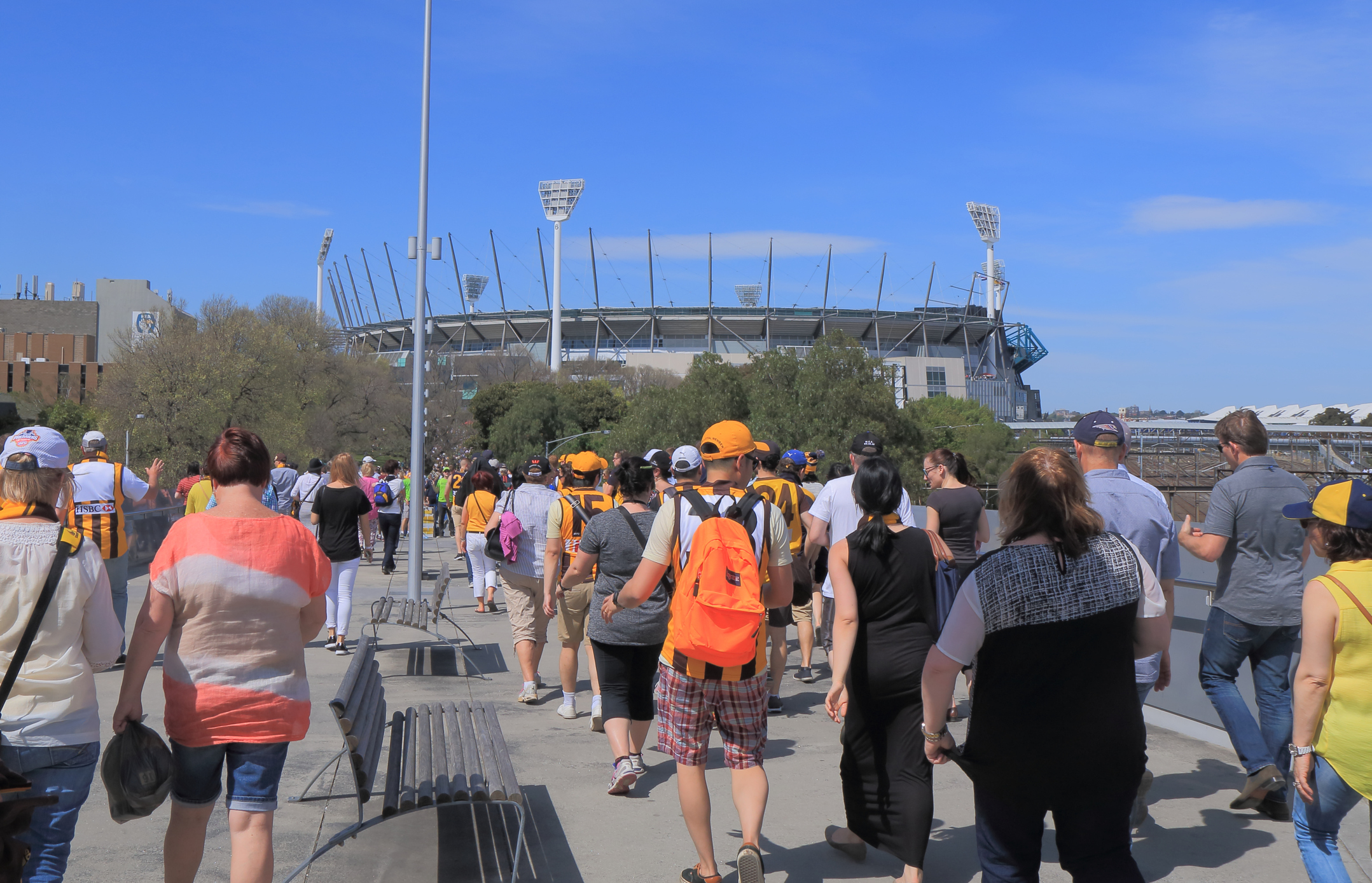 Article image for It's far too early to talk about crowds at AFL games, says medical association