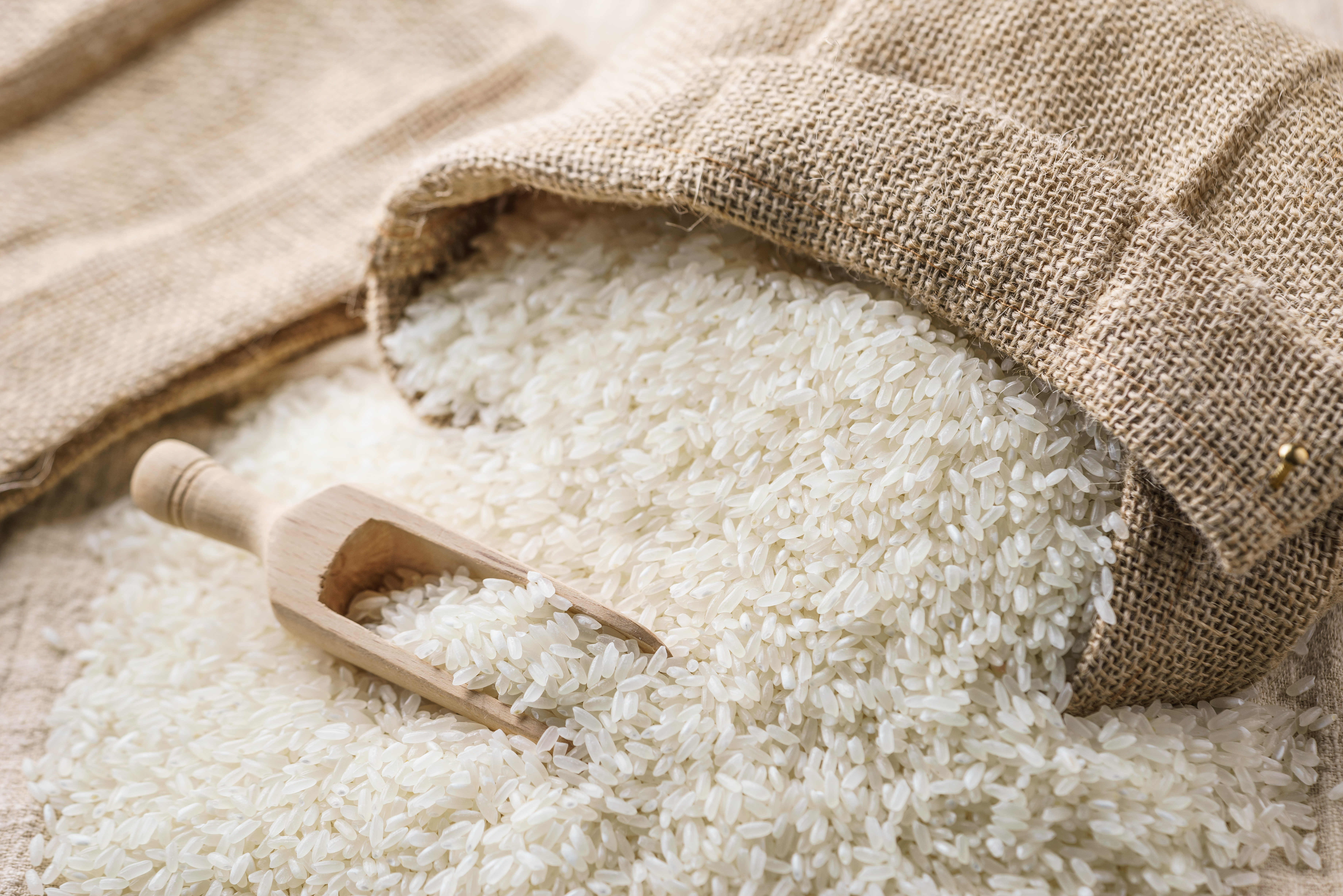 Article image for Rice shortage: There is a 'real risk' Australian rice supply will not meet demand this year