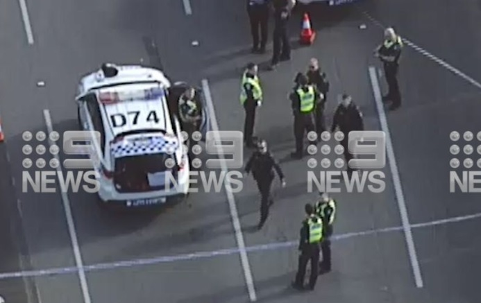 Article image for 'Distressed' man shot and killed by police on Monash Freeway