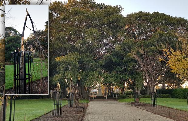 Confirmed: Mindless vandals attack botanic gardens upgrade
