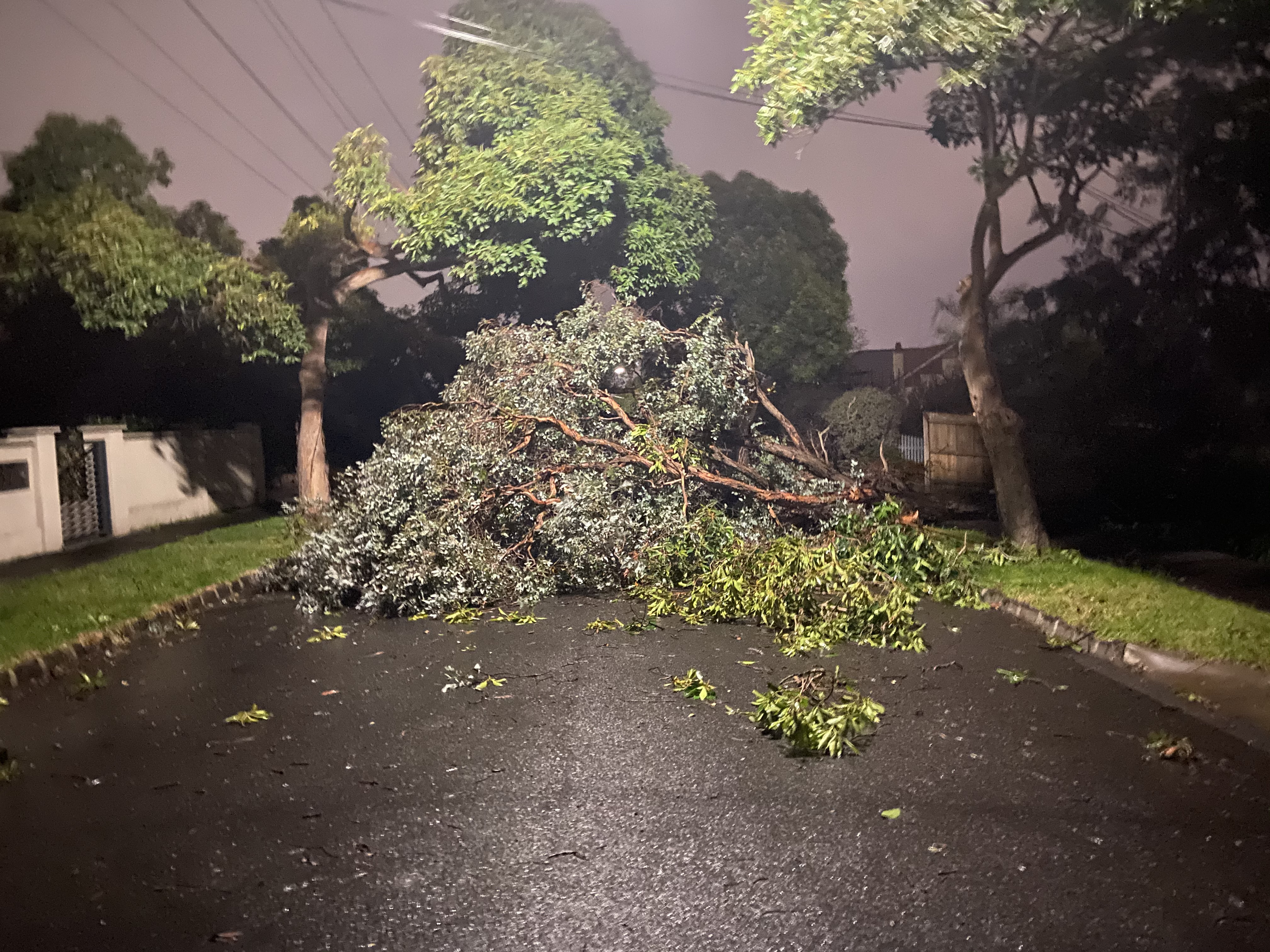 Article image for Thousands of Victorians still without power after Thursday night storms