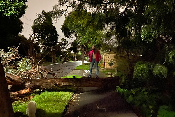 Article image for Emergency COVID-19 rules: What you are allowed to do if you're affected by storm damage