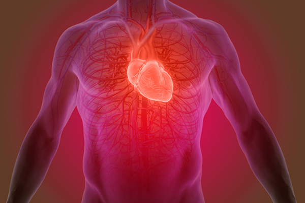 Article image for Why doctors are worried about COVID-19's impact on the heart