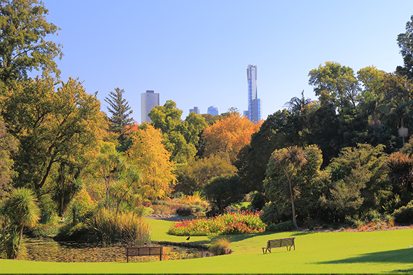 Article image for A new garden has opened at Melbourne's Royal Botanic Gardens