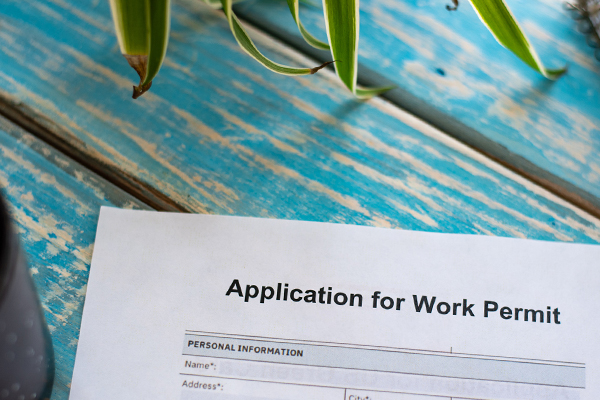 Article image for Some public sector work permits being extended 'until end of November'