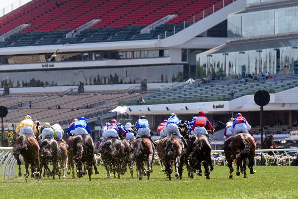 Article image for 'Devastated': Calls to ban the whip after another Melbourne Cup tragedy