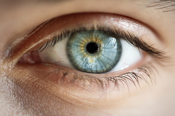 Article image for Pattern glare: A surprisingly common but little-known eye condition