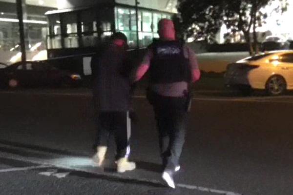 Article image for Police make massive find during Southbank arrest