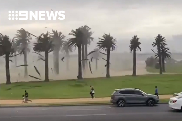 Article image for Wild winds lash Victoria, causing extensive damage