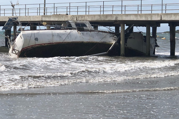 Article image for Wild winds wreak havoc on the Mornington Peninsula