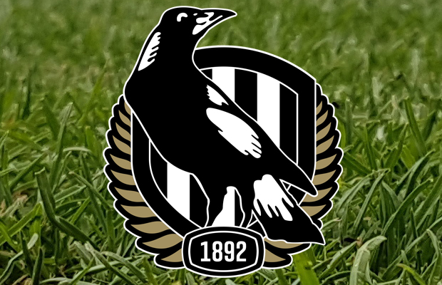 Article image for Collingwood footy boss denies approach to former Brisbane coach