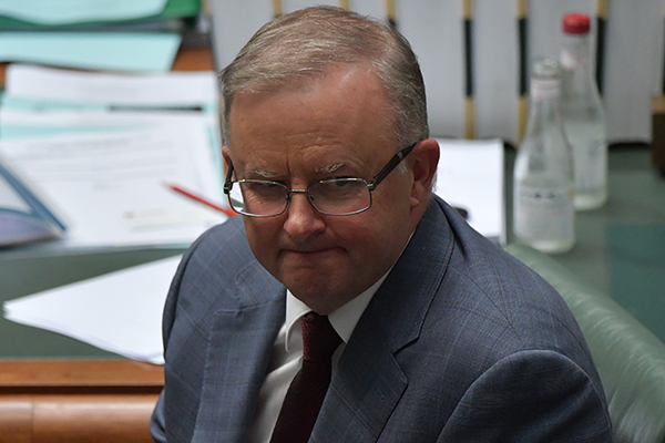 Article image for Anthony Albanese slips further behind Scott Morrison in polls