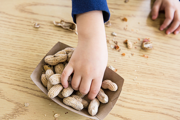 Article image for Why the rising rate of peanut allergies in Victorian kids has slowed