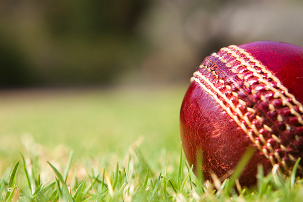 Article image for AFL icon takes up fight for local cricket club