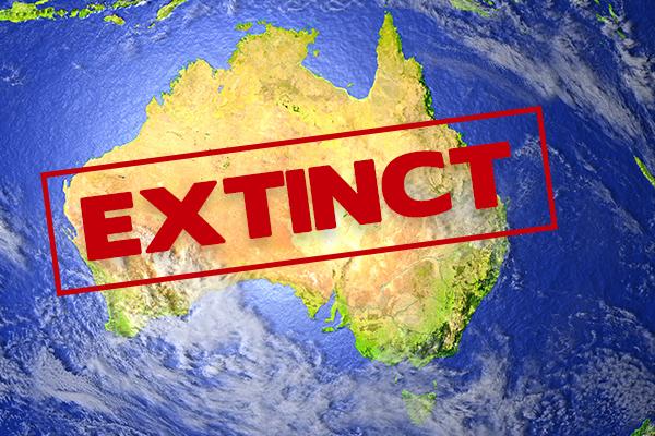 Another 13 Australian animals are now extinct