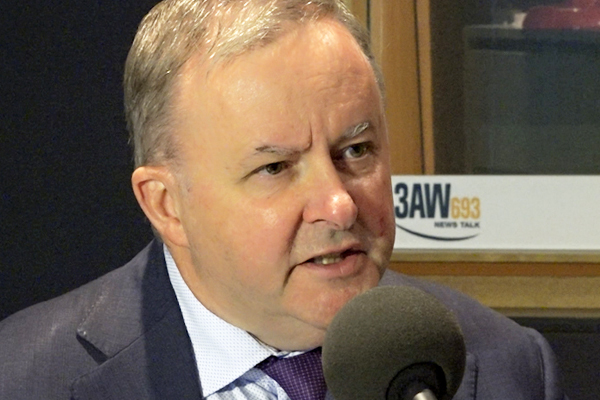 Article image for Anthony Albanese calls for vaccine cash incentives under plan to boost jabs