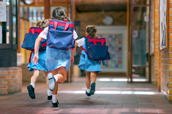 Article image for Former principal backs national curriculum shake-up