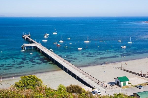 The fight to save a historical pier