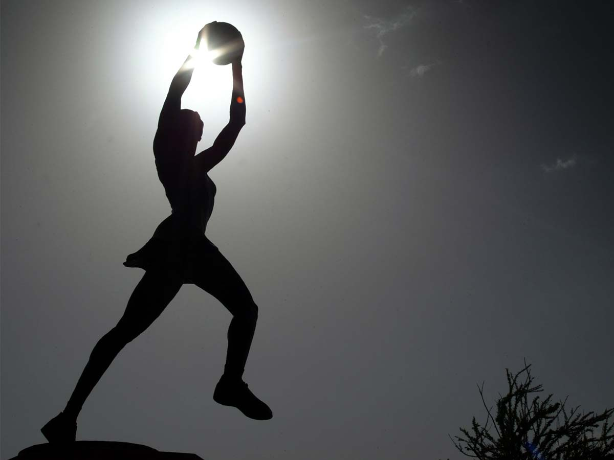 Article image for Victorians to fork out $300,000 for statue of 'iconic female netball identity'