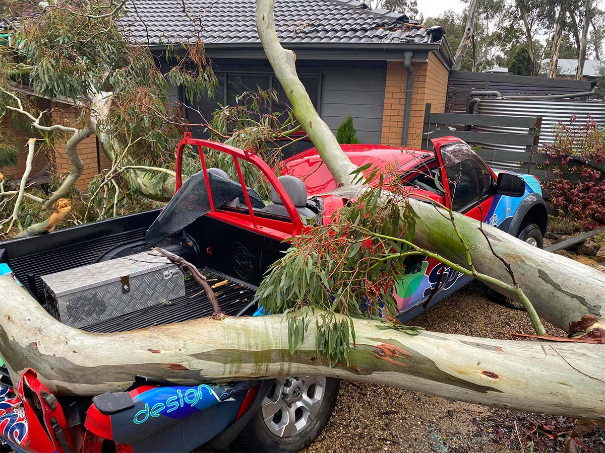 3AW Breakfast helps out a CFA volunteer who narrowly avoided being crushed by a tree