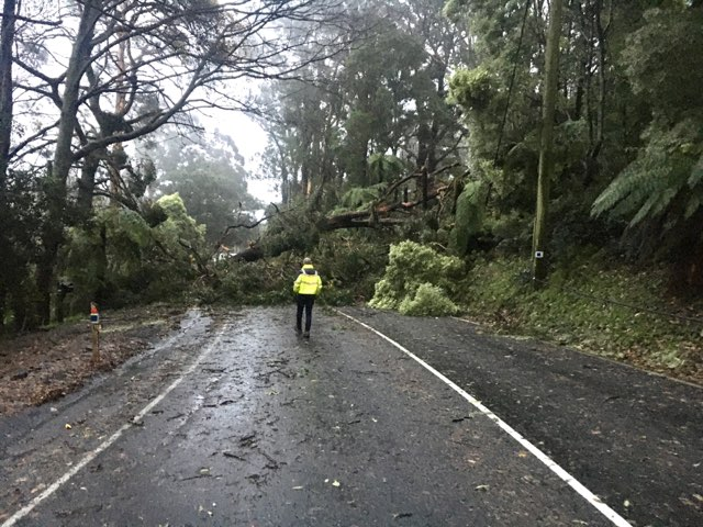 Article image for Victorians still without power warned there's 'a very real chance it could get worse'