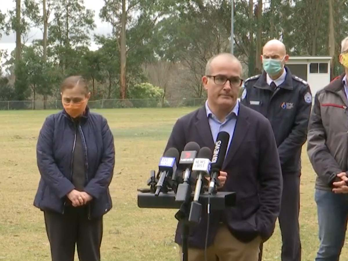 Article image for State Energy Emergency declared as power outage payment announced after 'tree carnage'
