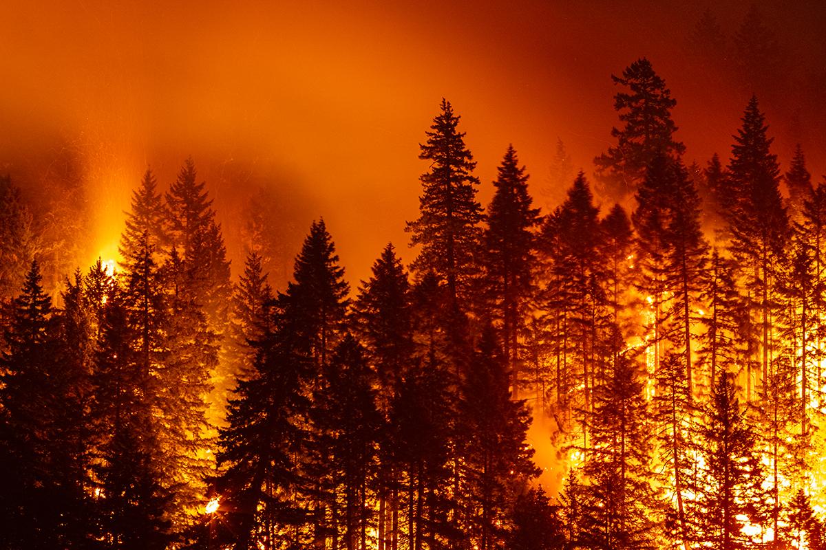 Article image for Melburnians in Canada escape horrific fire as 'unprecedented' heat wave wreaks havoc
