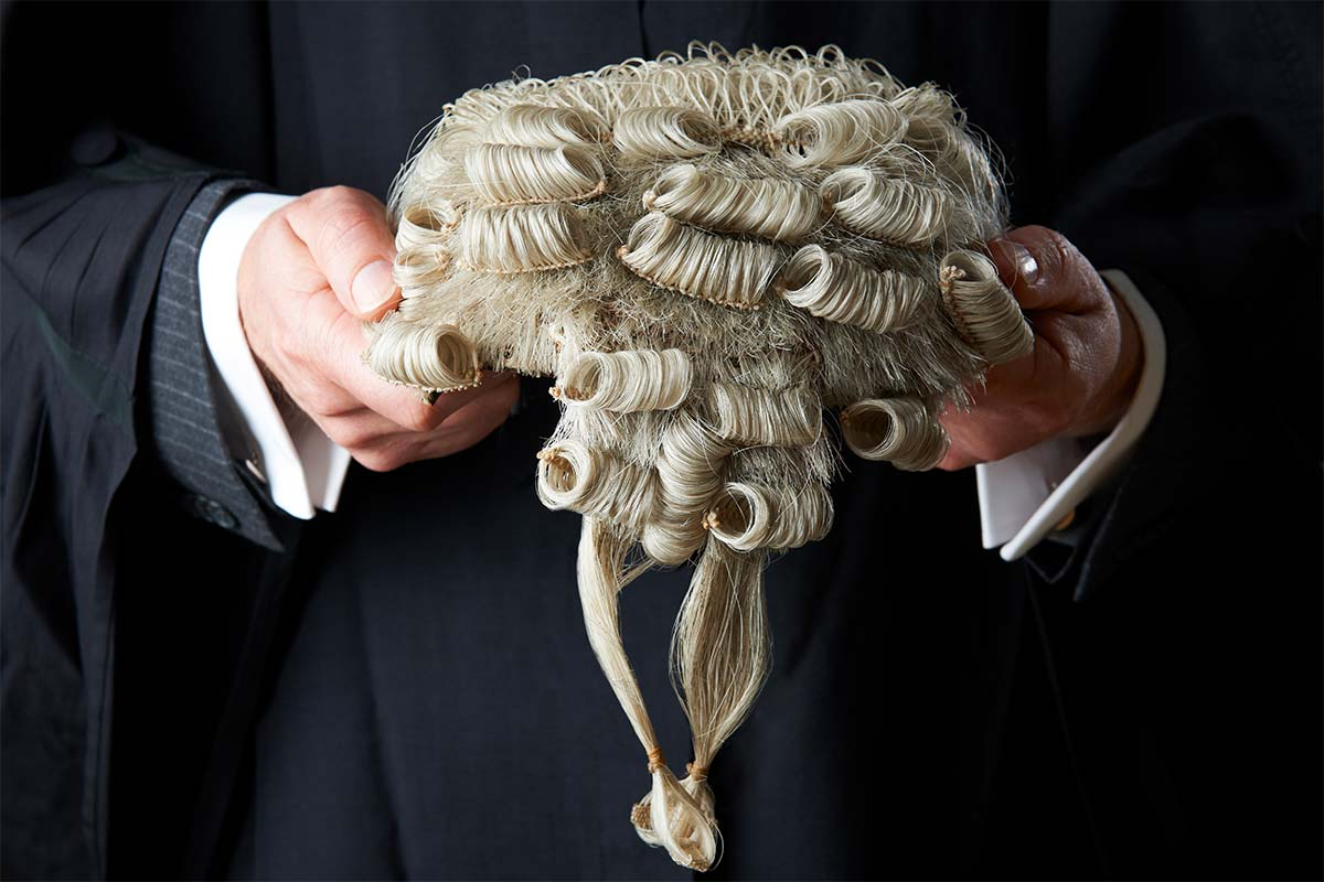 Barrister lawyer wig