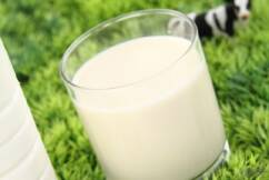 Dairy farmers in strong position