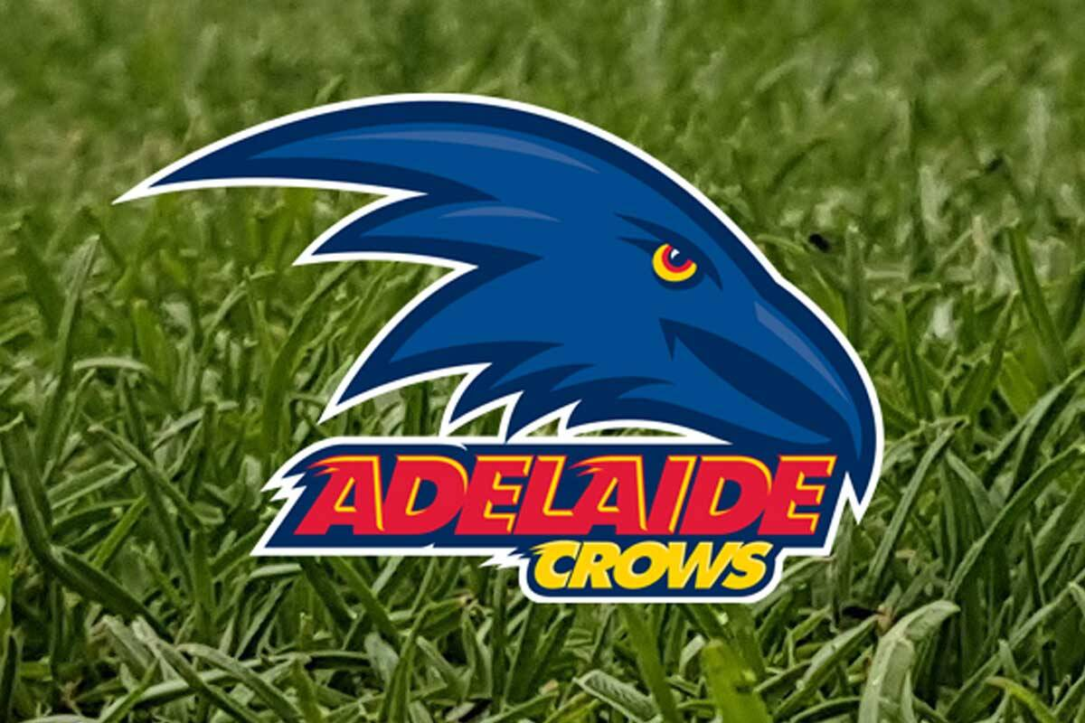 Article image for Crows cleared over 2018 pre-season training camp